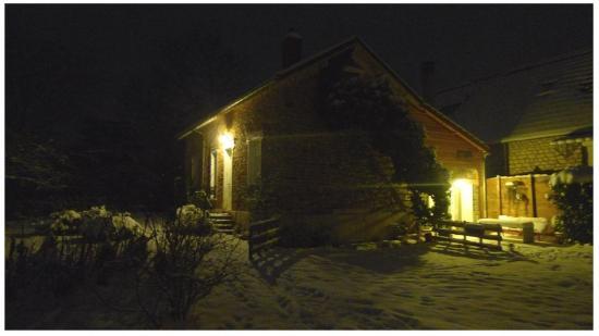 jardin hiver nuit