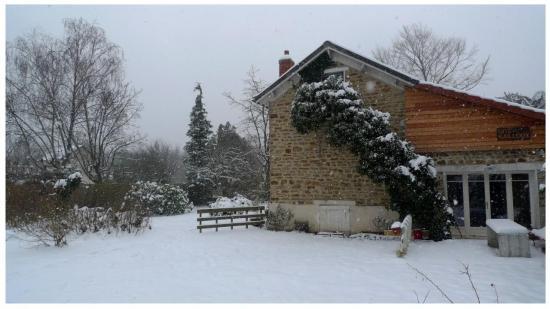 jardin neige